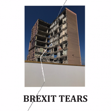 Brexit Tears Interview – Street Level Photoworks Calum Colvin and Robert Crawford 18/2/21